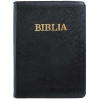 Biblia SCR 093 Z