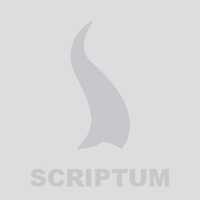 Husa pentru Biblie - maro (piele ecologica) - I Can Do All Things.Phil. 4:13