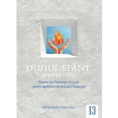 Duhul Sfant in Fapte 1 si 2 (Seria Sinteze Tematice)