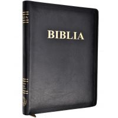Biblia SBR ICAM 087 PF