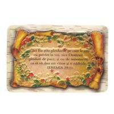 Magnet papirus Ieremia 29:11