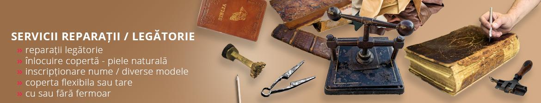 Servicii reparatii biblii